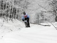 Vašek v zajetí zimy Českého lesa